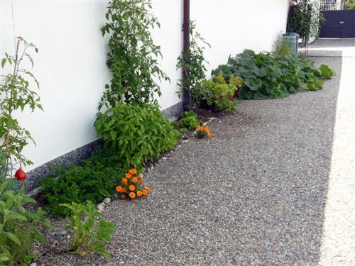 oltre il giardino - Piccolo Giardino Con Ghiaia