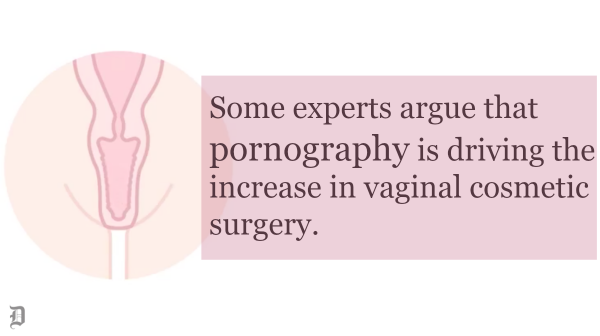 Vulvas beautiful young