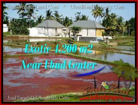 TANAH MURAH Di UBUD BALI DIJUAL 42 Are View Sawah Link Villa Tanahdibalidijualmurahwordpress 2015 08 28 Tan
