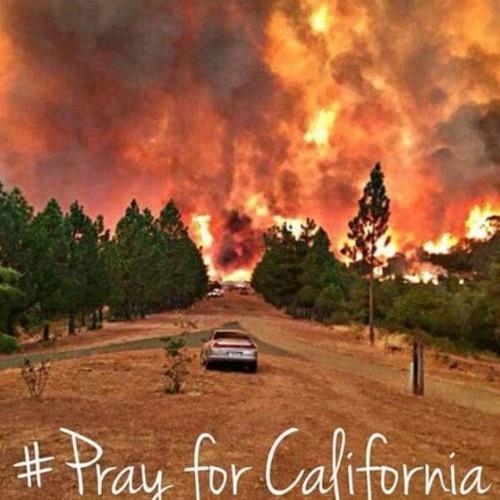 Le Nord de la Californie en flammes  073a0dfa-b9c1-4b90-9fb4-825a39feee41_500