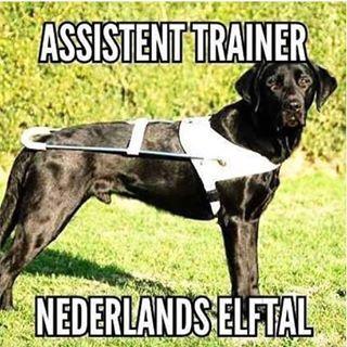 ohne holland zur em