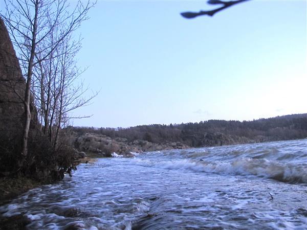 Brofjorden i Lysekils kommun tidigare i dag när det blåste mindre än nu. I vanliga fall löper här en grusväg längs bergsidan och strandkanten ligger en bra bit ut. Foto: Sigvard Gustavsson