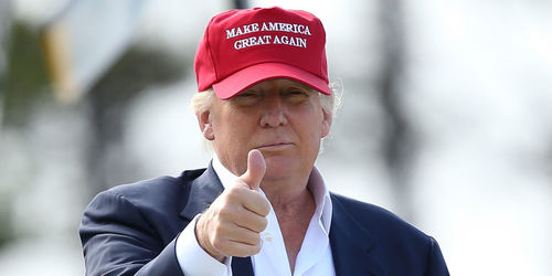Image result for trump with hat