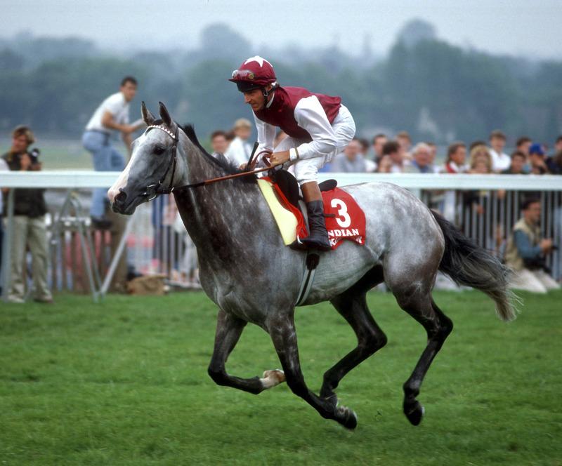 DIAMOND JUBILEE OGDENS-RACEHORSES HORSE RACING-#23