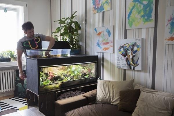 Serie osnabr cker wohnzimmer 7 osnabr cker lebt mit - Luftfeuchtigkeit im wohnzimmer ...