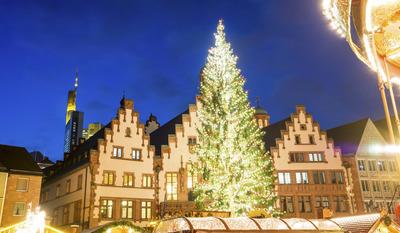 Weihnachtsbaum Frankfurt.Frontalcrash Gegen Baum Endet Tödlich Frankfurt Sucht Seinen