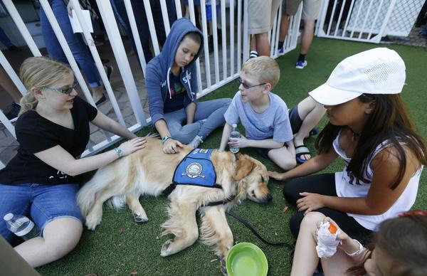 Florida shooting mother makes impassioned plea for action from jacob the comfort dog is visiting those affected by the florida shooting and hes on hand for hugs fandeluxe Choice Image