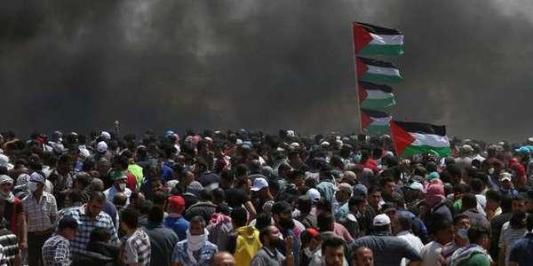 Palestine VS Israël  - Page 39 Ffa0f276-9019-4a81-b196-1135a267dbda