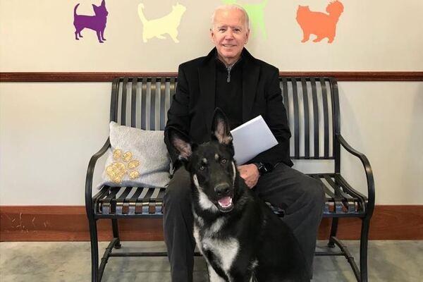 Joe Biden sits with his dog, Major