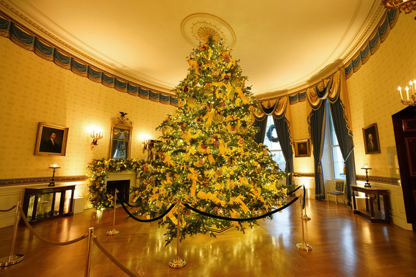 The Blue Room of the White House is decorated during the 2020 Christmas preview, Monday,