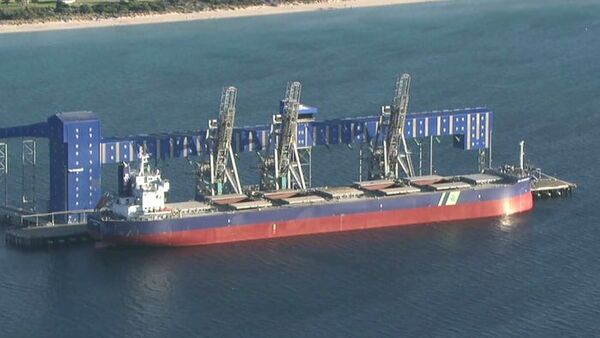 A large bulk carrier ship is shown at port