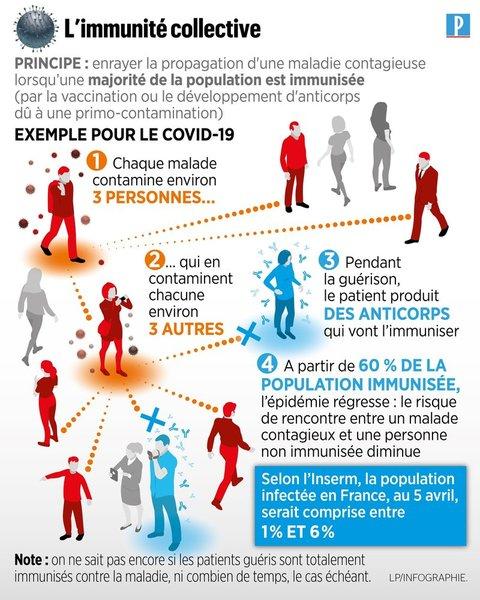 infographie immunité collective