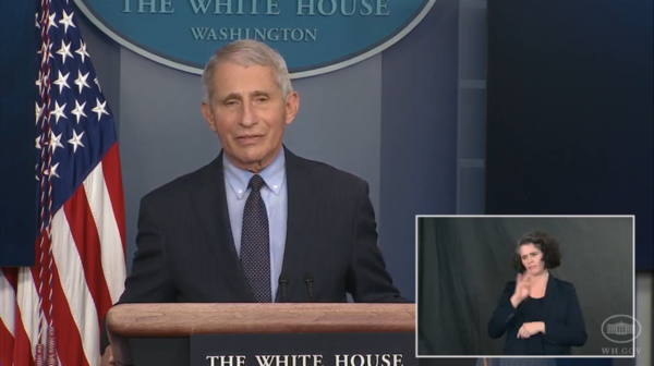 Anthony Fauci in the White House Briefing Room