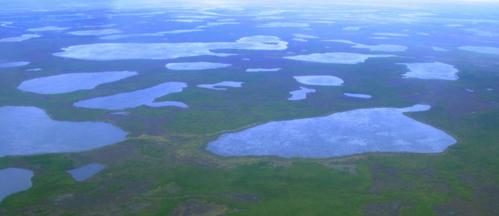 Tauende Permafrostflächen in Nordsibirien. Foto Reuters